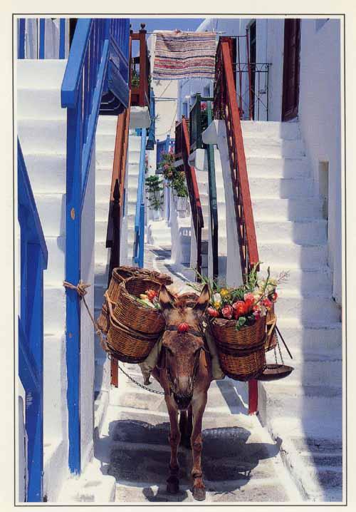 Grecia: la nuova Ifigenia del terzo millennio