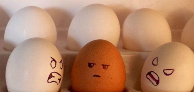 Un uovo nero in mezzo a tante uova bianche