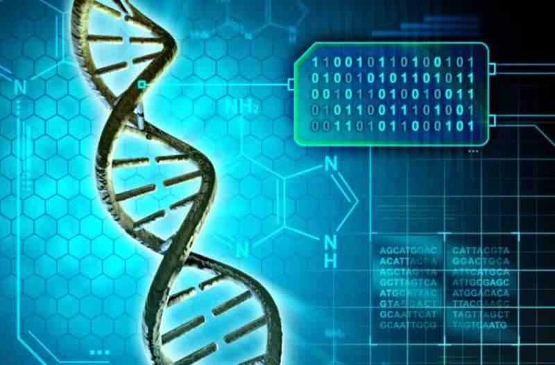 computer biologici